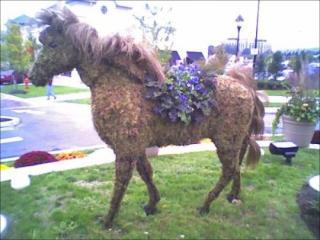 http://lancien.cowblog.fr/images/Animaux1/topieres018.jpg
