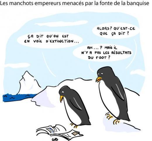 http://lancien.cowblog.fr/images/Animaux4/h2014037101233173285.jpg