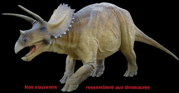http://lancien.cowblog.fr/images/Animaux5/189C18563I1F4.jpg