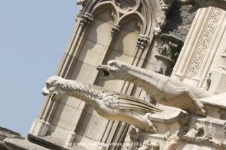 http://lancien.cowblog.fr/images/Artarchitecture2/NDParisgarg.jpg