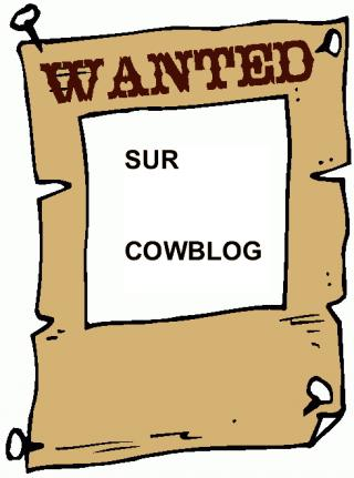 http://lancien.cowblog.fr/images/Bloginformatique/wanted.jpg