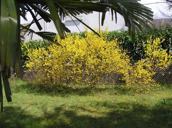http://lancien.cowblog.fr/images/Bretagne/P4080002.jpg