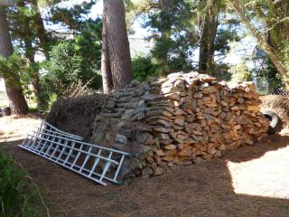 http://lancien.cowblog.fr/images/Bretagne2/tasbois.jpg