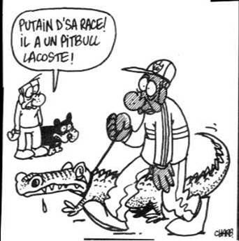 http://lancien.cowblog.fr/images/Caricatures1/Lesmarques.jpg