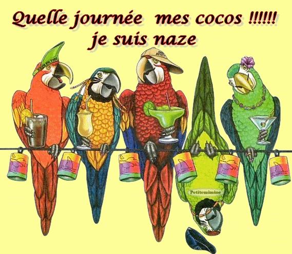 http://lancien.cowblog.fr/images/Caricatures1/insomniecoco.jpg