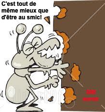 http://lancien.cowblog.fr/images/Caricatures1/termite.jpg
