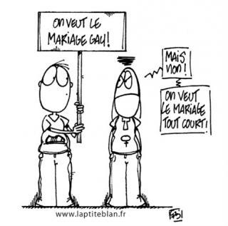 http://lancien.cowblog.fr/images/Caricatures2/mariagegay.jpg