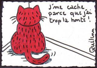 http://lancien.cowblog.fr/images/Caricatures3/Jaitroplahonte.jpg