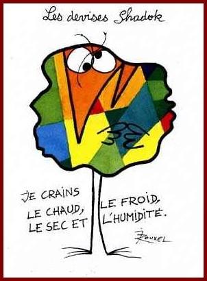 http://lancien.cowblog.fr/images/Caricatures3/Principedeprecautionjecrainstout.jpg