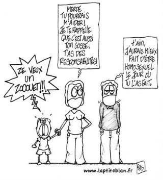 http://lancien.cowblog.fr/images/Caricatures3/adoptionconstitution.jpg