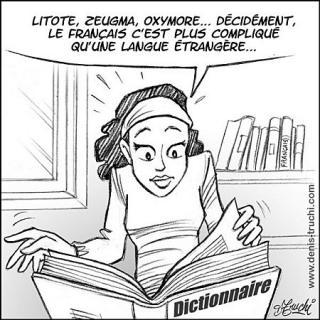 http://lancien.cowblog.fr/images/Caricatures3/francais51.jpg
