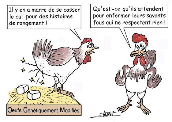 http://lancien.cowblog.fr/images/Caricatures3/ogmoeuf.jpg