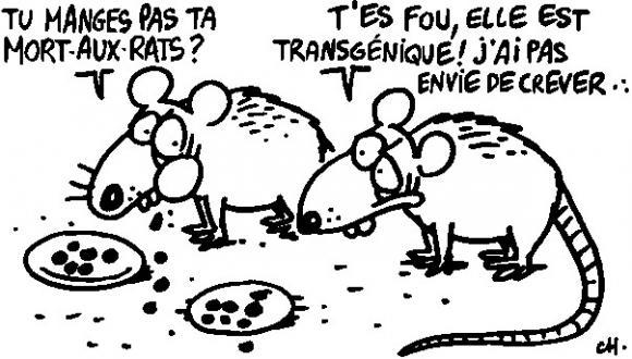 http://lancien.cowblog.fr/images/Caricatures3/rats10.jpg