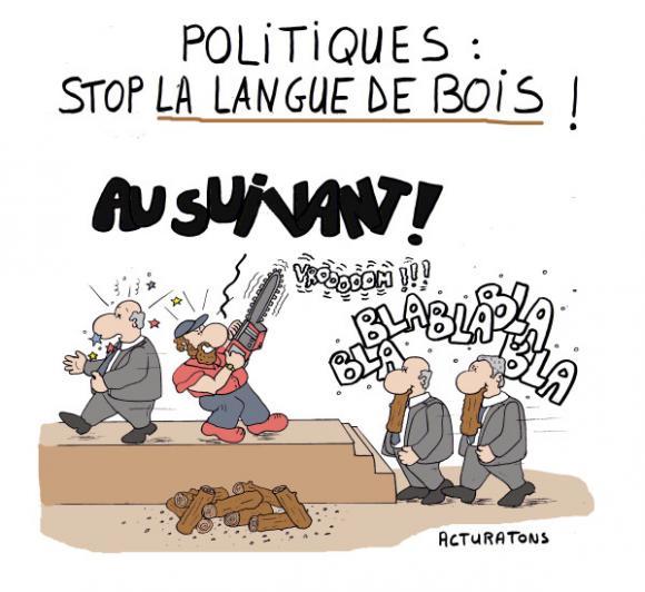 http://lancien.cowblog.fr/images/Caricatures4/politiquesstoplalanguedebois.jpg