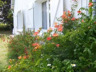http://lancien.cowblog.fr/images/CarnacPlessis/1002810.jpg