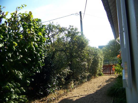 http://lancien.cowblog.fr/images/CarnacPlessis/1002946.jpg