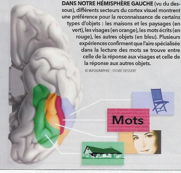 http://lancien.cowblog.fr/images/Cerveau1/zonemots.jpg