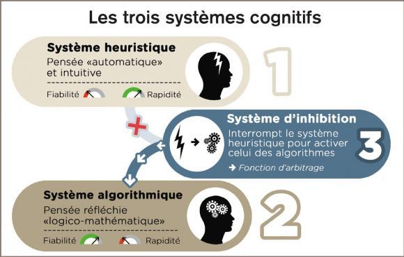 http://lancien.cowblog.fr/images/Cerveau2/les3systemescognitifs1255.jpg