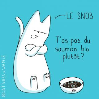 http://lancien.cowblog.fr/images/Chats3/22.jpg