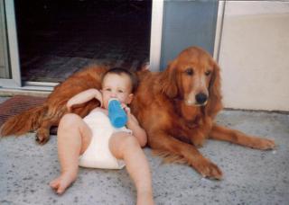 http://lancien.cowblog.fr/images/Chiens/adorabledogsandbabies22.jpg