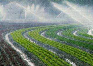 http://lancien.cowblog.fr/images/ClimatEnergie/arrosageagriculture.jpg
