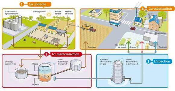 http://lancien.cowblog.fr/images/ClimatEnergie2/biomasse.jpg