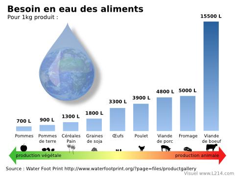 http://lancien.cowblog.fr/images/EnergieClimat2/eaufonctionaliments480x360.png