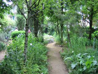 http://lancien.cowblog.fr/images/Fleurs3/jardinjardinbotaniquedesannoisdesplantesmedicinales10261.jpg