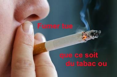 http://lancien.cowblog.fr/images/Image4/fumerseularreter-copie-1.jpg