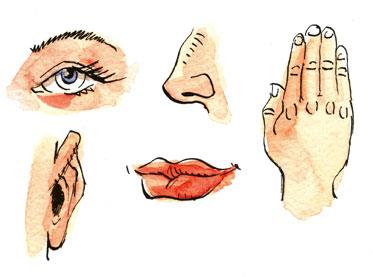 http://lancien.cowblog.fr/images/Images2-1/Non5sens.jpg