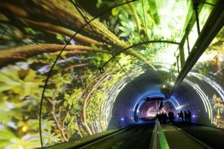 http://lancien.cowblog.fr/images/Images2/1899758letubenouveautunneldelacroixrousse.jpg