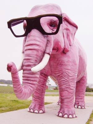 http://lancien.cowblog.fr/images/Images2/pinkelephant.jpg