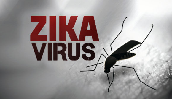 http://lancien.cowblog.fr/images/Images3/zikavirus.png