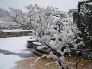 http://lancien.cowblog.fr/images/Paysages3/P1010019.jpg