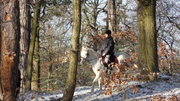 http://lancien.cowblog.fr/images/Paysages3/SDC10334.jpg