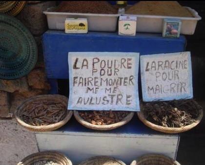 http://lancien.cowblog.fr/images/Paysages5/epice1.jpg