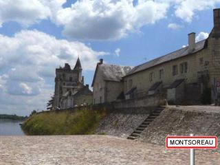 http://lancien.cowblog.fr/images/Paysages6/Montsoreau-copie-1.jpg
