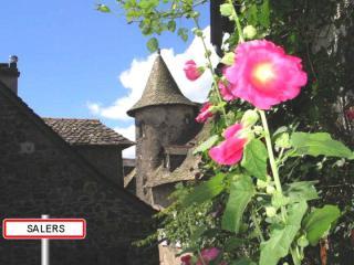 http://lancien.cowblog.fr/images/Paysages6/Salers.jpg