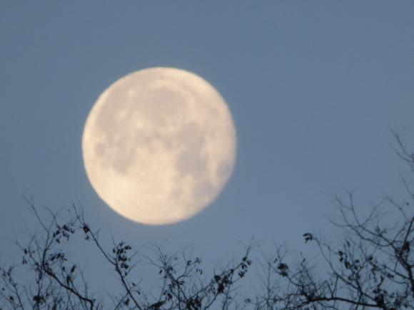 http://lancien.cowblog.fr/images/Paysages6/lune.jpg