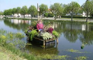 http://lancien.cowblog.fr/images/Photoscomiques1/13riviere.jpg