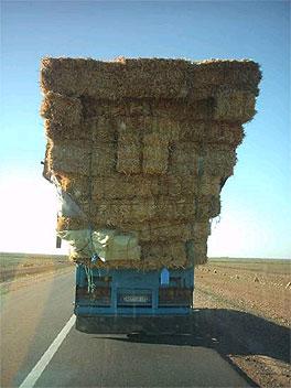 http://lancien.cowblog.fr/images/Photoscomiques1/9-copie-1.jpg