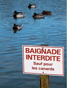 http://lancien.cowblog.fr/images/Photoscomiques1/cavalaitcouppreciser469274.jpg