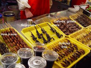 http://lancien.cowblog.fr/images/Photoscomiques2/Diapositive11.jpg