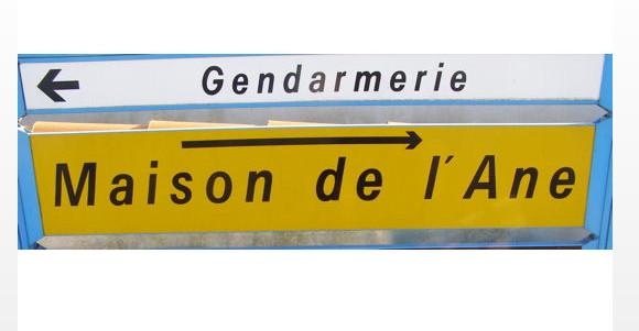 http://lancien.cowblog.fr/images/Photoscomiques2/ane.jpg