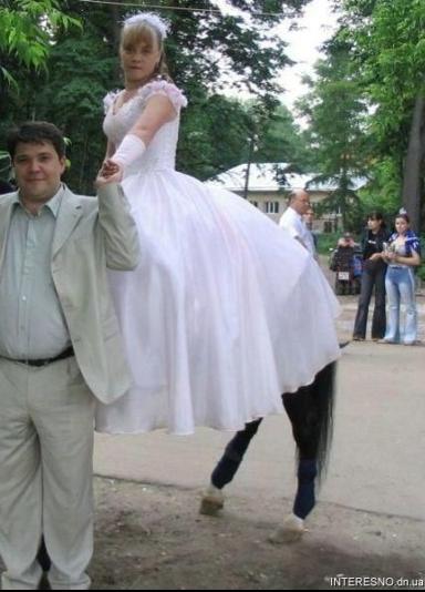 http://lancien.cowblog.fr/images/Photoscomiques2/centaure.jpg