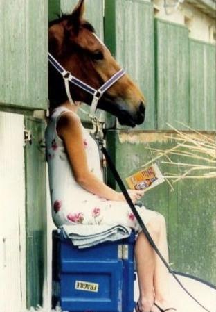 http://lancien.cowblog.fr/images/Photoscomiques2/cheval.jpg