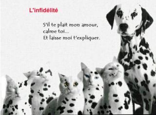 http://lancien.cowblog.fr/images/Photoscomiques2/infidelite.jpg