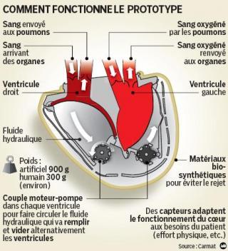 http://lancien.cowblog.fr/images/SanteBiologie-1/3429391faitdujours.jpg