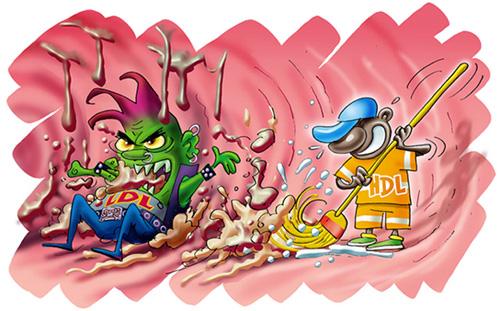 http://lancien.cowblog.fr/images/SanteBiologie-1/HdlLdl.jpg