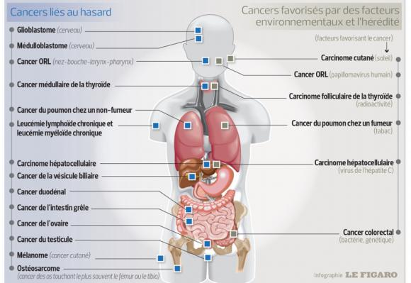 http://lancien.cowblog.fr/images/SanteBiologie-1/INF468083ee929e11e4abb788d26eb8f340805x555.jpg